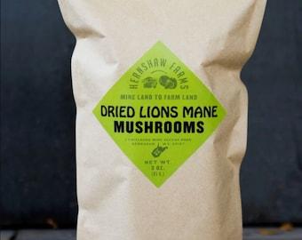 3 oz Lion's Mane, Air Dried  Mushrooms,