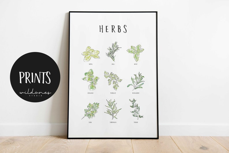 Herb Poster – Kitchen Herbs – Print – Garden Herbs – Infographic – Kitchen  Art – Herb List – Herb Art – Herb Print
