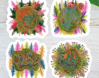 Mystical nature vinyl sticker 3 pack, botanical sticker, witchy stickers, Laptop sticker, Sticker pack, mindfulness gift, planner stickers
