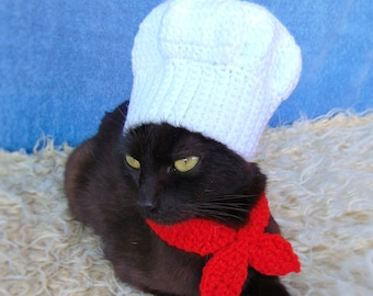 Blue Eyed cat Sweatshirt Sweatpants Set Black cat