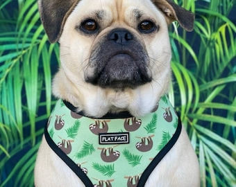 Reversible Dog Harness and Leash set Sarafi and Sloth. Suitable for all breeds
