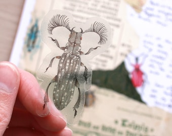 transparent bug stickers for your bullet journal or scrapbook, transparent stickers, lots of colorful insects