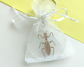 Mantis key chain, praying mantis pendant, key ring with insect - transparent with copper colored beetle