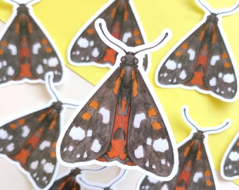 Moth Sticker, Laptop Sticker with Butterfly, Vinyl Stickers with Halloween Moth, Fall Sticker