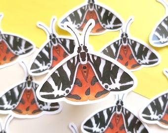 Butterfly Sticker, Laptop Sticker with Moth, Vinyl Stickers with Halloween Moth, Fall Sticker