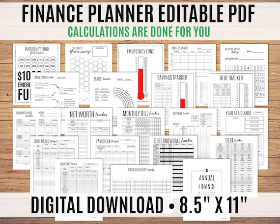 Financial Planner, Finance Planner, Biweekly Budget Planner, Debt Snowball, Budget Printable, Editable PDF - Calculations done for you