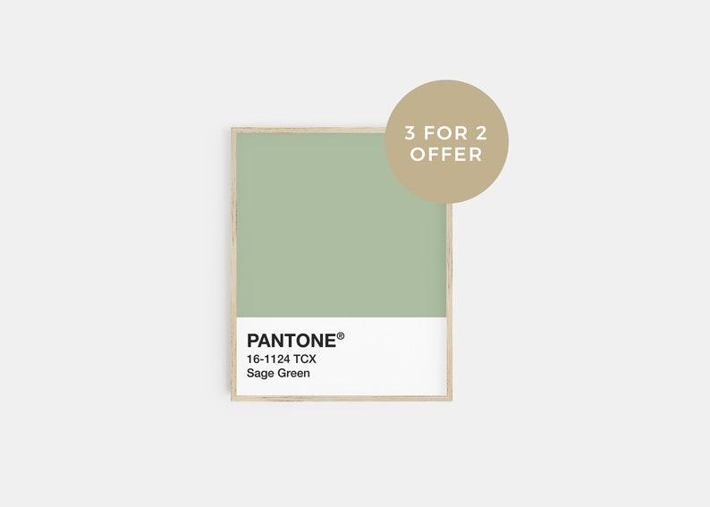 sage green decor sage green print pantone poster pantone print 3 for 2 offer