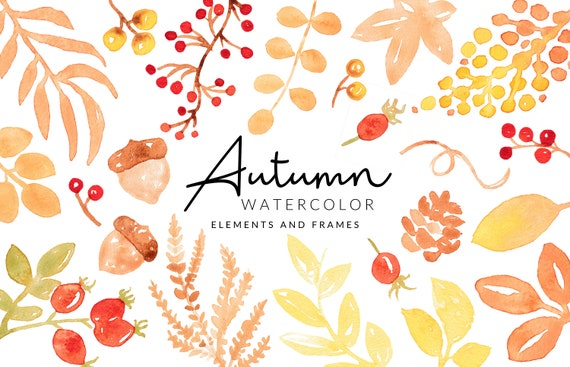 Soft Autumn / Fall Watercolor Clipart | Leafs and Berries | Digital Download | Separate PNG Elements | Clipart Frames | Red Orange Clipart