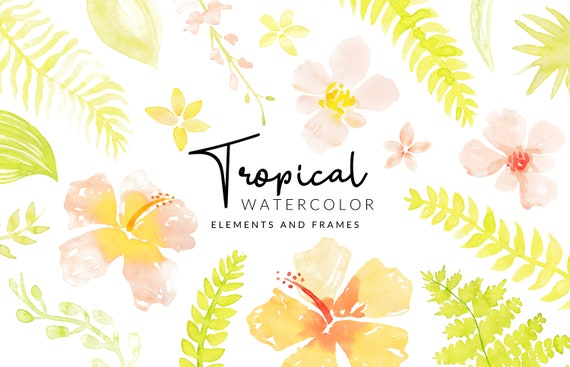 Soft Tropical Watercolor Clipart | Leafs and Flowers | Digital Download | Separate Floral PNG Elements | Clipart Frames | Peach Clipart