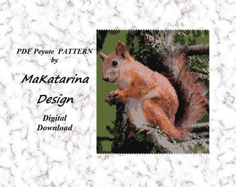 brooches DIY Beading Embroidery Kits Natural Art Canvas Decoration  squirrel Size: 43x58 mm GIFT