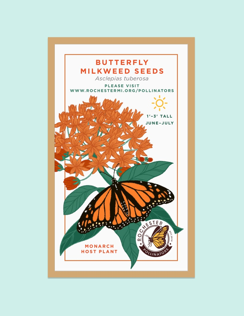 Michigan Native Seed Packets Butterfly Milkweed