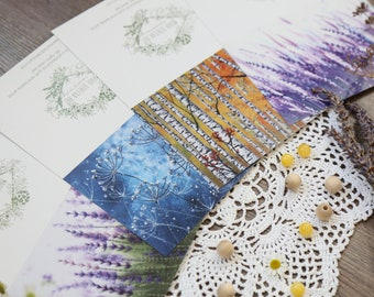 4 Blank Note Cards & Envelopes, Nature Greeting Card, Lavender card, Fall Card, Botanical Postcard, Birch tree card, Thank you card