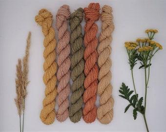"Mini Skein Set Luster Sock DK 5x 20g ""Late Summer Walks"" - naturally dyed, organic wool, non-superwash, plastic free"