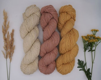 """Sockyarn - Luster Sock DK """"Late Summer/Early Autumn Mix"""" 100g - naturally dyed, organic wool, non-superwash, plastic free"""