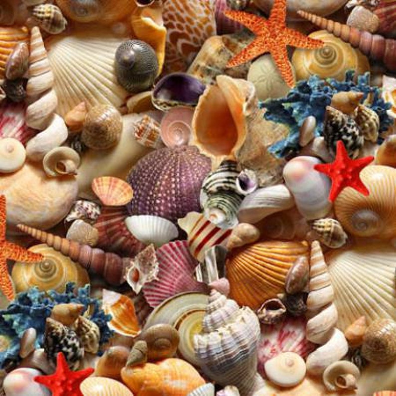 Fabric Elizabeth Studios Fabric Children of the Sea Fabric by the Yard Quilting Fabric Ocean Fabric,392E-MLT Seashell Fabric
