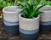 Modern Ceramic Succulent Planter, Matte Black and White Speckled Plant Pot, White Cactus Planter, Small Contemporary Windowsill Planter