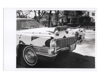 Real Photo Postcard, Belmont Blvd, Moo Cadillac, Nashville, Jan, 1999.