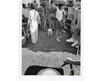 Real Photo Postcard, Centennial Park, TACA Craft Show, Nashville, 1997.