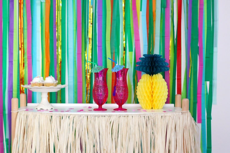 Streamer Backdrop Tropical Party Decorations Moana Birthday Hawaiian Luau Photo Booth Jungle Safari Party Fringe Backdrop Wild one