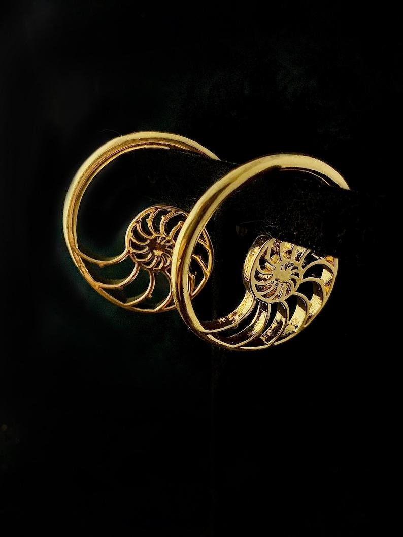 Brass or Silver Spiral Ear Hangers