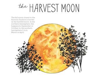 Harvest Moon Nature Journaling Mini Pack - Charlotte Mason, Nature Study, Homeschool