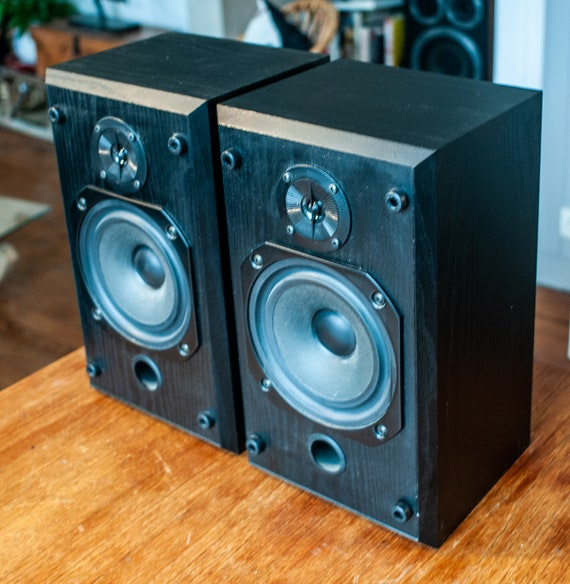 Pair of speakers B/W Vision DS1 - Charming English