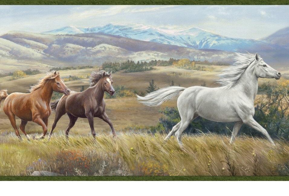 Open Range Horses Wallpaper Border
