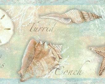 Seashells Wallpaper Border CT46051b