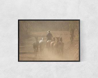 Horses Print – High Quality Lustre Print