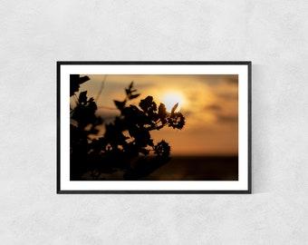 Plant Poster – High Quality Lustre Print