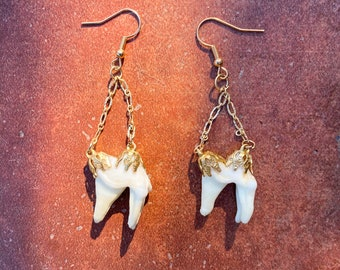 S7 Coyote Tooth Jewelry Set Necklace Earrings Bracelet Unique Premium Outdoors