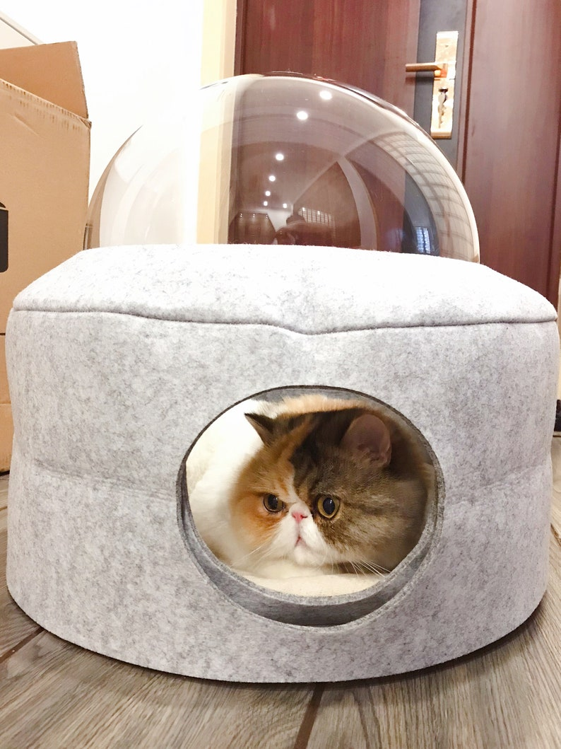 Very good Space cat house,cat house,space cat bed,good space cat,cat beds,colors cat bed,cat color house,soft cat house,cheap cat house