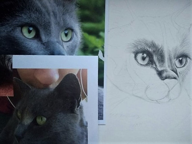 Portrait from Photo Cat Drawing Custom Pet Drawings A Great Gift for Pet Lovers; Pencil Drawing Dog Drawing Animal Drawing