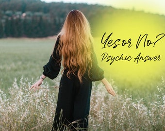 Yes or No Answer with Lisa Saliture Psychic Tarot Medium Readings