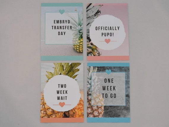 Bright Colours IVF Milestone Cards Spots and Stripes Edition