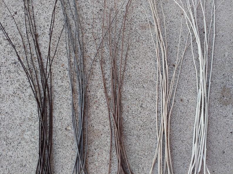 Set of 50 Hand Painted Nature Inspired White Birch BranchesWhite BirchVase FillerReady To ShipWhite Birch Decorative SticksWedding