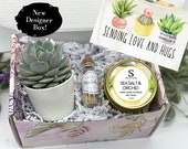 Thinking of You - Succulent Gift Box - Missing You - Friendship Gift Box - Care Package - Thinking of You Gift -FREE SHIPPING