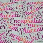Placenta Encapsulator Decal