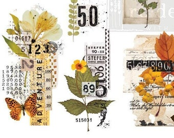 """New! FALL FOLIAGE COLLECTOR Transfer, Redesign with Prima, 3 sheets, 6""""x12"""" each, Rub On Transfer, Small Transfers, Furniture Transfer"""