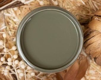 New! LIMITED EDITION! JUNIPER Dixie Belle Paint, Fall 2021, Suzanne's Fall Colors, Chalk Mineral Paint, 16oz.