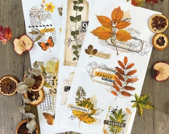 """New! FALL FOLIAGE COLLECTOR Transfer, Redesign with Prima, 3 sheets, 6""""x12"""" each, Rub On Transfer, Small Transfers, Autumn Decor Transfer"""