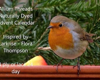 Larkrise Naturally Dyed Yarn Advent Calendar