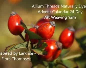 Larkrise Naturally Dyed Art Weaving Yarn Advent Calendar