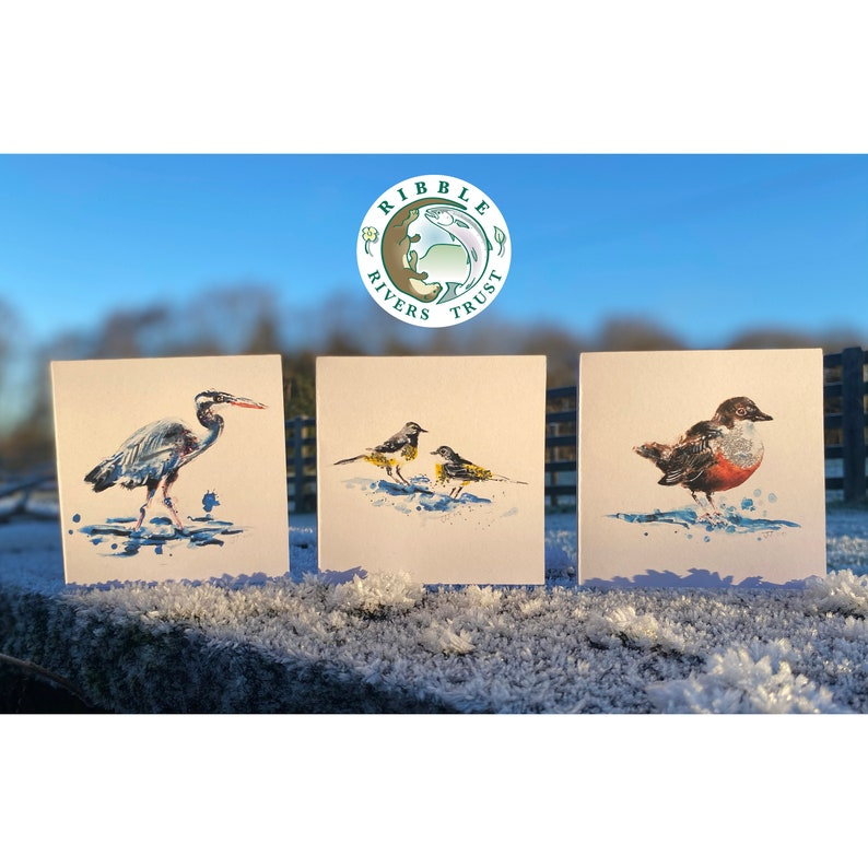 Charity Eco-Friendly Birds Greetings Cards for Ribble image 0