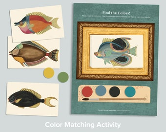 Find the Colors! Fish Color Sorting Activity   Preschool Matching Game   Nature Pre K   Homeschool Printables   Learning Activities