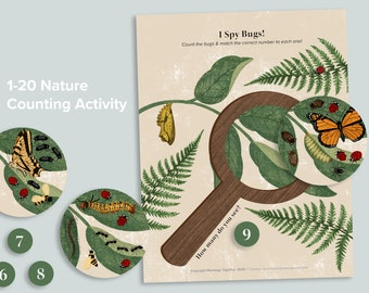 1-20 Bug Counting Activity   Preschool Nature Busy Book Pages   Numbers Homeschool Printables   Preschool Number Matching Count Game