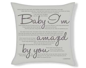 I Could Stay Awake Aerosmith Lyric Quote Scatter Cushion Throw Pillow Cover Gift