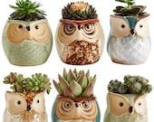 Owl Pot, Set Of 6, Ceramic Flowing, Glaze Base, Succulent Plant Pot, Cactus Plant Pot, Flower Pot, Container Planter, Bonsai Pots, Gift Idea