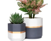 Ceramic Flower Pot, Set of 2, Cylinder And Hexagonal Planter, Modern Garden Planters, Geometric Plant Containers, for MORE PLEASE CONTACT