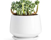 Potey Ceramic Plant Pot, Flower Planters 5.9 with Drainage Hole, Saucer Medium Pots for Indoor Plant, Modern Planter, Pure White